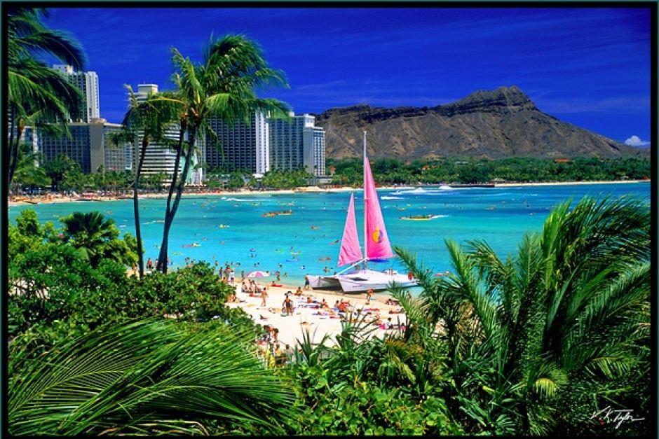 Waikiki Pink Boat - Vincent Khoury Tylor -  www.hawaiianphotos.net